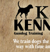 Missouri Gundog Training